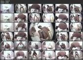 [EXHU-01] ALLうんこ 潜入パーティー会場和式トイレ 1 Defecation 盗撮 Voyeur