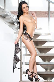 Meghan Leopard - Step Up